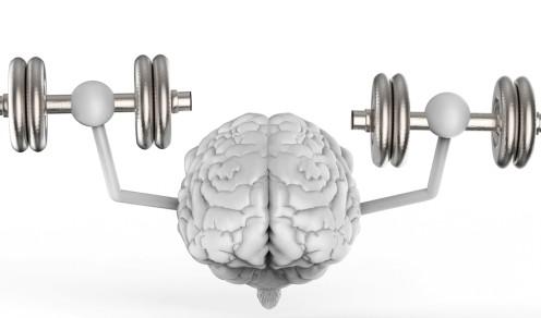 praca umysłowa oraz praca fizyczna